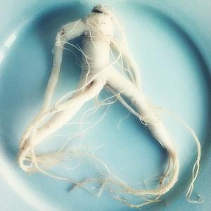 Корни от импотенции - природные средства для мужского здоровья